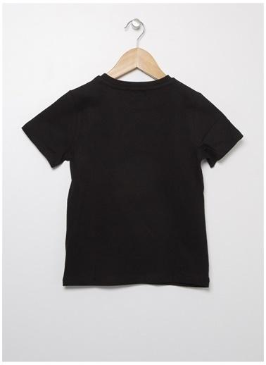 National Geographic Tişört Siyah